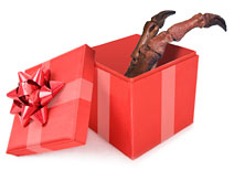 Claw in gift box