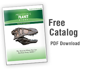 Free Catalog PDF Download