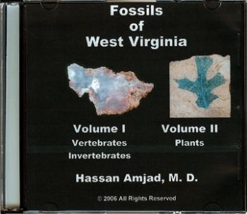 Fossils of West Virginia on CD 2 Volume Set, color version