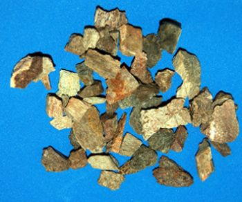 Cretaceous Dinosaur Bone (Authentic) Fragments, 1 LB. pkg.