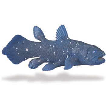 Coelacanth, model