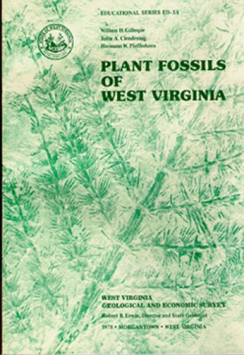 Plant Fossils of West Virginia, 180 page book