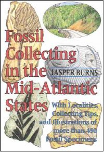 Fossil Collecting In The Mid-Atlantic States by Jasper Burns book