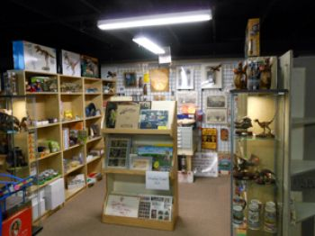 Antiques & Uniques, Fossils, Rocks & Minerals Shop