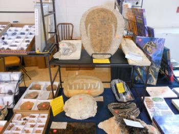 2020 Washingnton, PA Gem, Mineral, Jewery & Fossil Show May 2-3, 2020