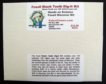 Fossil Shark Teeth Dig It Kit