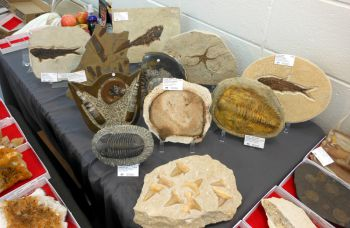 2019 Charleston, West Virginia  Gem, Mineral & Fossil Show, October 19-20, 2019