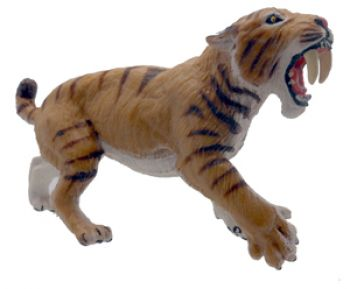 Smilodon, model, Saber-tooth Cat
