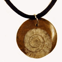 Ammonite, pendant necklace