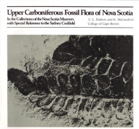 Upper Carboniferous Fossil Flora of Nova Scotia