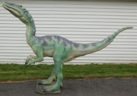 Coelophysis, larger than life model in the flesh RENTAL ONLY