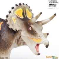 Triceratops Double Brow Horn