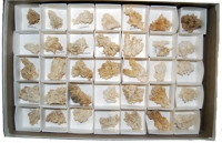 Aragonite Crystal Collection