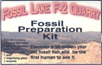 Fossil Fish Dig Kit, Green River Specimens (SORRY SOLD OUT)
