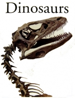 Dinosaurs And Other Prehistoric Animals, 448 page book