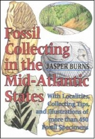 Fossil Collecting In The Mid-Atlantic States by Jasper Burns