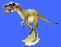 RENT THIS Allosaurus life-size juvenile model. SEE TEXT FOR DETAILS