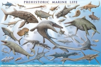 Prehistoric Marine Life Poster NOW 25% OFF