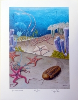 Bundenbach Fossils by Rob Sula original art print