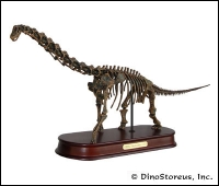 Brachiosaurus Skeleton Model