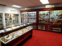Reckling Fossil Collection at the Stirrup Gallery, Davis & Elkins College, Elkins, WV