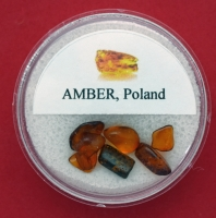 BALTIC AMBER IN GEM JAR