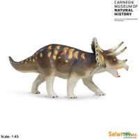 Triceratops, life-like model