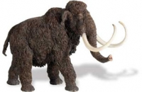 Woolly Mammoth, Carnegie Collection Model