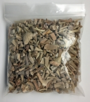 Real Fossil Shark Teeth (1 pound bulk)