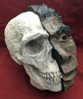 Neanderthal, early human skull 1/2 skull & 1/2 flesh reconstruction