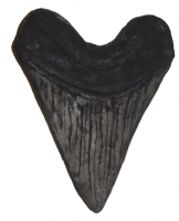 17 Inch Megalodon Tooth (giant sculpture)